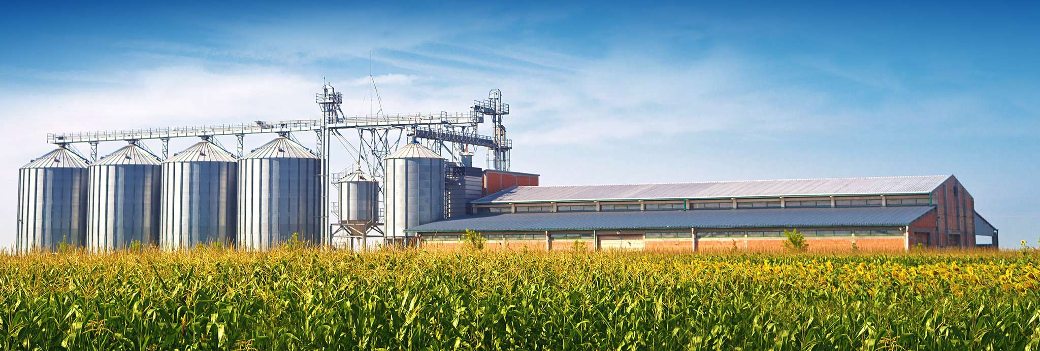 Commercial farm storage silos